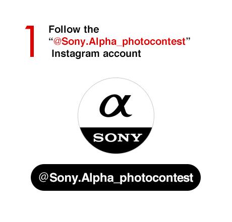 SonyAlphaAnimalPortrait | Sony Alpha Series Instagram Animal